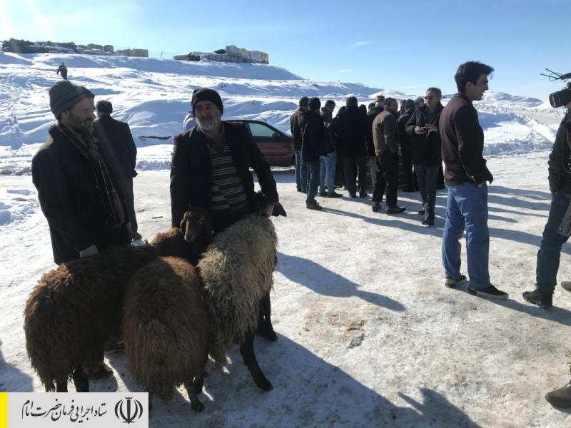 اهدای دام سبک توسط ستاد اجرایی فرمان امام به مردم زلزله زده آذربایجان شرقی