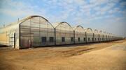 افتتاح ۳ طرح بزرگ اقتصادی ستاد اجرایی فرمان امام(ره) در استان مرکزی و ایجاد ۹۲۰ شغل جدید