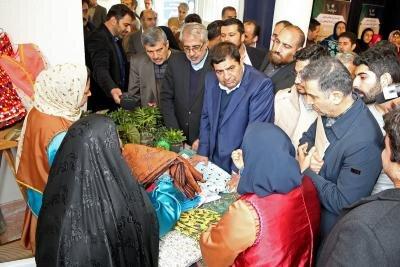 بازدید رئیس ستاد اجرایی فرمان حضرت امام (ره) از نمایشگاه طرح های اشتغالزایی در گلوگاه