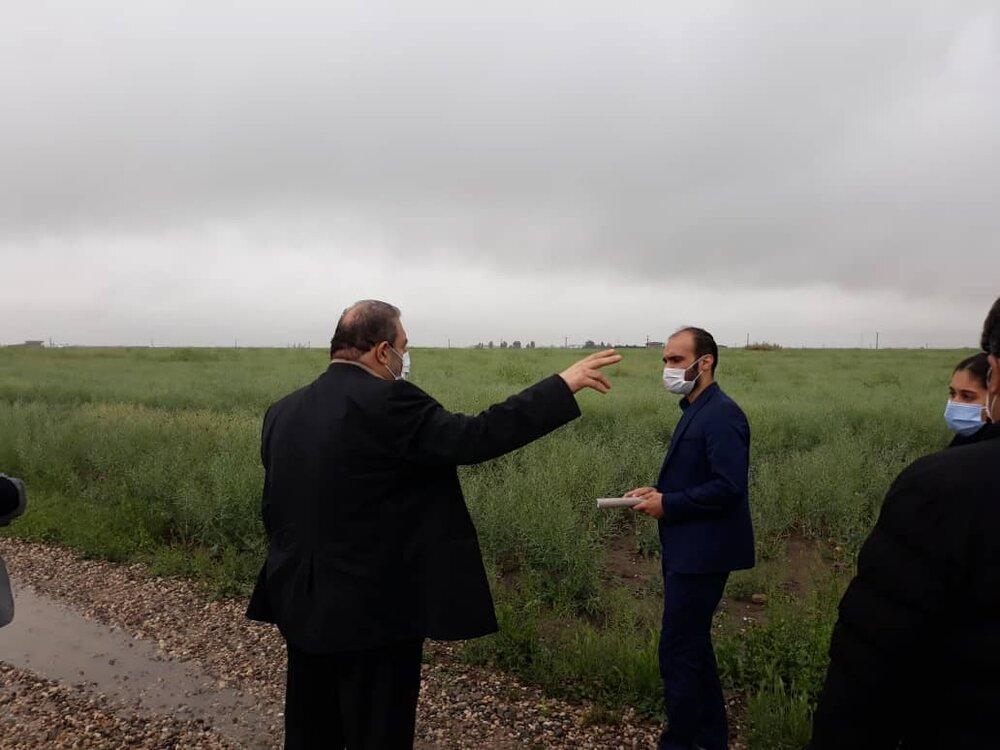 بازدید مدیرکل ستاد اجرایی فرمان حضرت امام (ره) گلستان از اراضی دیمزارها