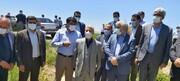بازدید از دیمزارهای زیرپوشش طرح جهش تولید در هشترود و مراغه