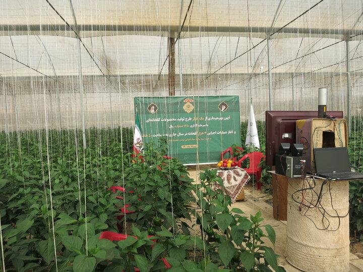 آیین بهرهبرداری از یکهزار طرح تولید محصولات گلخانهای