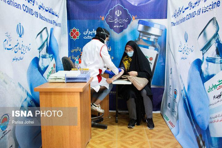 آغاز فاز سوم طرح ملی واکسن ایرانی برکت در بوشهر