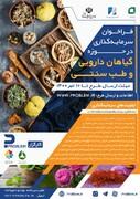 فراخوان سرمایهگذاری در حوزه گیاهان دارویی و طب سنتی با حمایت ستاد اجرایی فرمان امام