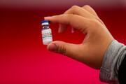انتشارخلاصه نتایج تست انسانی واکسن کوو ایران برکت برای نخستینبار