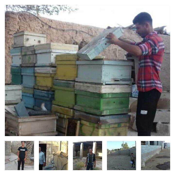 اهلیت سنجی طرح اشتغالزایی در روستای بنه اسماعیل