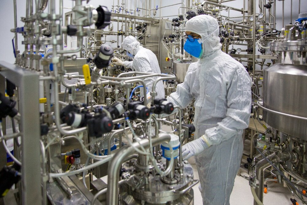 تکذیب خبر بروز اختلال در خط تولید واکسن برکت توسط معاون وزیر بهداشت