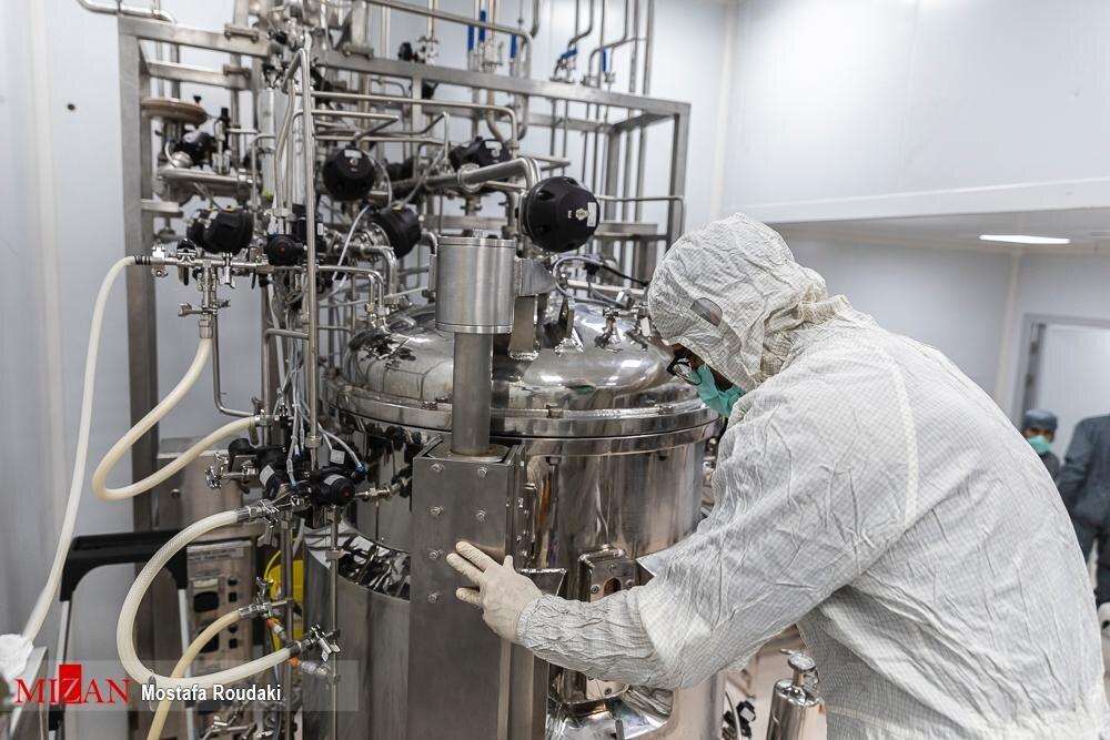 تولید ۱۴ میلیون دوز واکسن برکت تا امروز