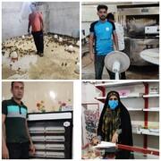 گزارش تسهیلگران بندر بوشهرروستای احمدی